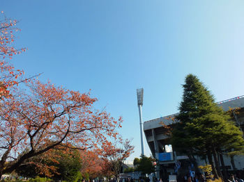 秋晴れ.jpg